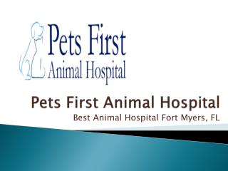 Pets First Animal Hospital - Best Animal Hospital Fort Myers, FL