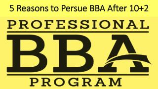 5 Reasons to Persue BBA After 10 2
