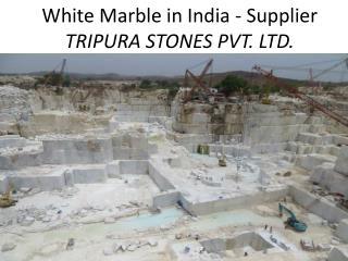 White Marble in India-Supplier-Tripura Stones