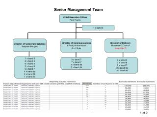 Senior Management Team