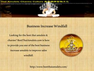 Business Increase Windfall