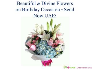 Beautiful & Divine Flowers on Birthday Occasion - Send Now UAE!