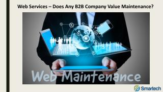 Web Services – Does Any B2B Company Value Maintenance?