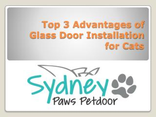 Top 3 Advantages of Glass Door Installation for Cats