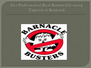 Get Professional Boat Bottom Cleaning Experts in Broward