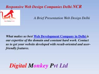 Web Design Companies Delhi NCR -Web Design India