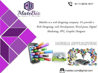 Get Attractive Website By Matebiz Ecommerce Company India
