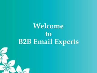 B2B Email Marketing Service Providers - B2B Email Experts