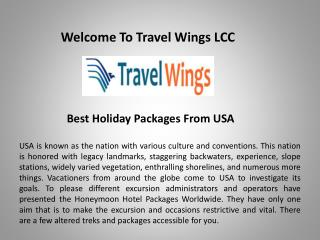 Travel Agency in Maryland, travelwingsusa.com