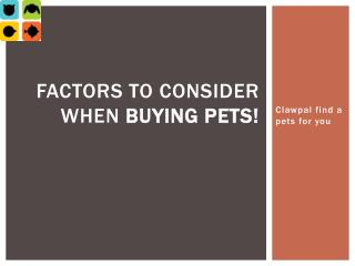 Factors to Consider When Buying Pets!