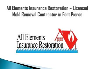 Licensed Mold Removal Contractor in Fort Pierc