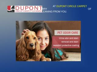 Make Your Home More Beautiful With Dupont Circle Carpet Cleaning