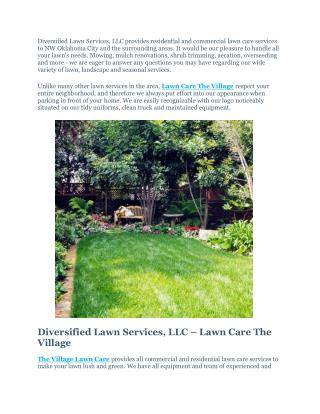 Lawn Care The Village