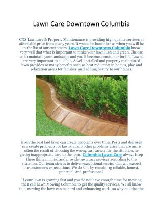 Lawn Care Services Florida