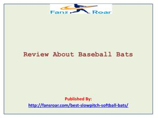 Review About Baseball Bats