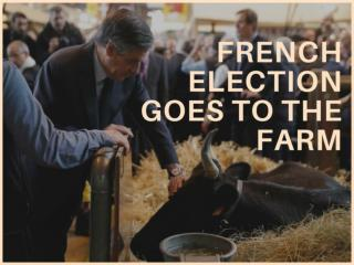 French election goes to the farm