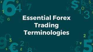 Essential Forex Trading Terminologies