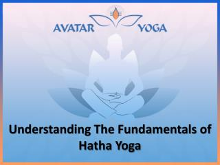 Understanding The Fundamentals of Hatha Yoga