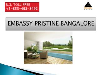 Embassy pristine Bangalore