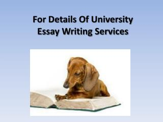 For Details Of University Essay Writing Services