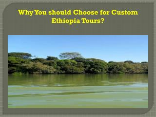 Why You should Choose for Custom Ethiopia Tours ?