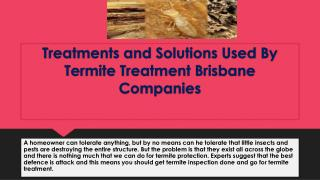 Treatments and Solutions Used By Termite Treatment Brisbane Companies