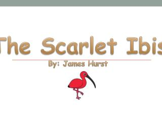 The Scarle t Ibis By: James Hurst