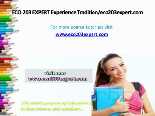 ECO 203 EXPERT Experience Tradition/eco203expert.com