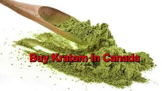 Online Store To Buy Kratom In Canada