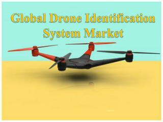 Global Drone Identification System Market