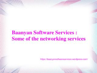 Baanyan Software Services -Some of the networking services