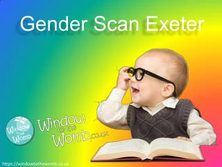 Ppt An Easy Baby Gender Prediction Test You Can Take At
