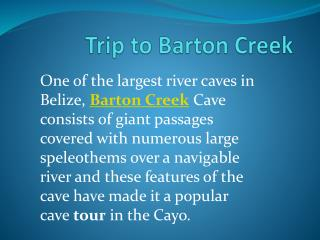 Die ultimative Tagestour nach Barton Creek in Ihrer Belize Reise