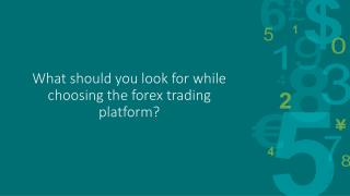Points you should consider while choosing the forex trading platform?