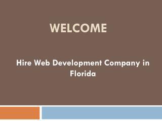 Hire Web Development Company in Florida