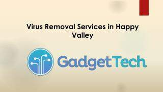 Virus Removal Services in Happy Valley