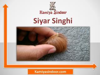 सियार सिंघी के प्रयोग और फायदे हिंदी में, सियार सिंघी की पूजा मंत्र सहित