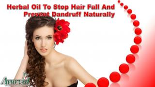 Herbal Oil To Stop Hair Fall And Prevent Dandruff Naturally