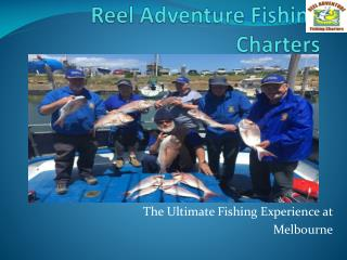 Fishing Westernport - Reel Adventure Fishing Charters