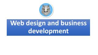 Web design and business development