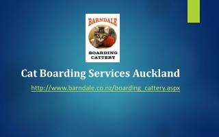 Cat Boarding Services Auckland