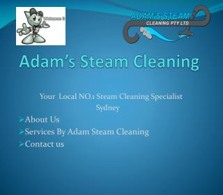 Adam Steam Cleaning : Best Carpet Cleaning, Upholstery Cleaning, Tiles and Grout Cleaning Services