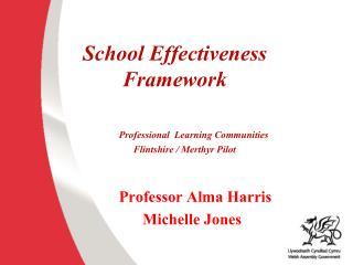 School Effectiveness Framework Professional  Learning Communities          Flintshire / Merthyr Pilot