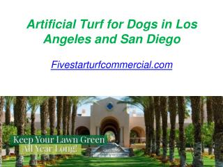 Artificial Turf for Dogs in Los Angeles and San Diego - Fivestarturfcommercial.com