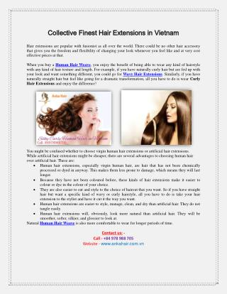 Collective Finest Hair Extensions in Vietnam