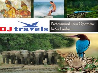 Lot of Excitement & Discounts- Exclusive Sri Lanka Holidays