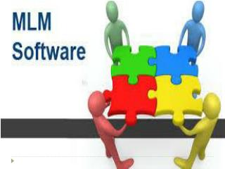 MLM software in Mumbai - Omega Softwares