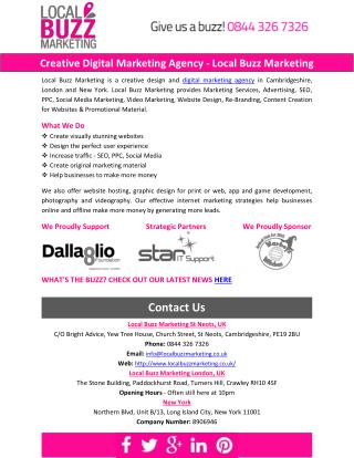 Creative Digital Marketing Agency - Local Buzz Marketing