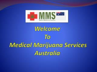 Get Expert Treatment Of Serious Illness By Medical Marijuana Treatment.