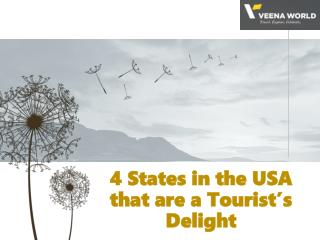 4 States in the USA that are a Tourist's Delight